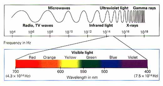Electromagnetic spectrum is composed of radiation.