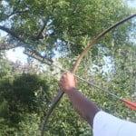 Heyrold's Arrow