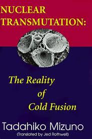 Nuclear Transmutation The Reality of Cold Fusion by Tadahiko Mizuno